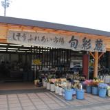 yama_u2